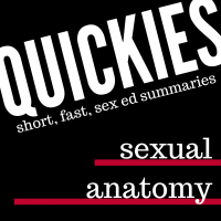 quickies: sexual anatomy summary