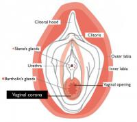how deep in is the hymen